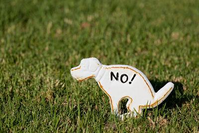 La aplicación que ayuda a limpiar la ciudad de los restos de los perros