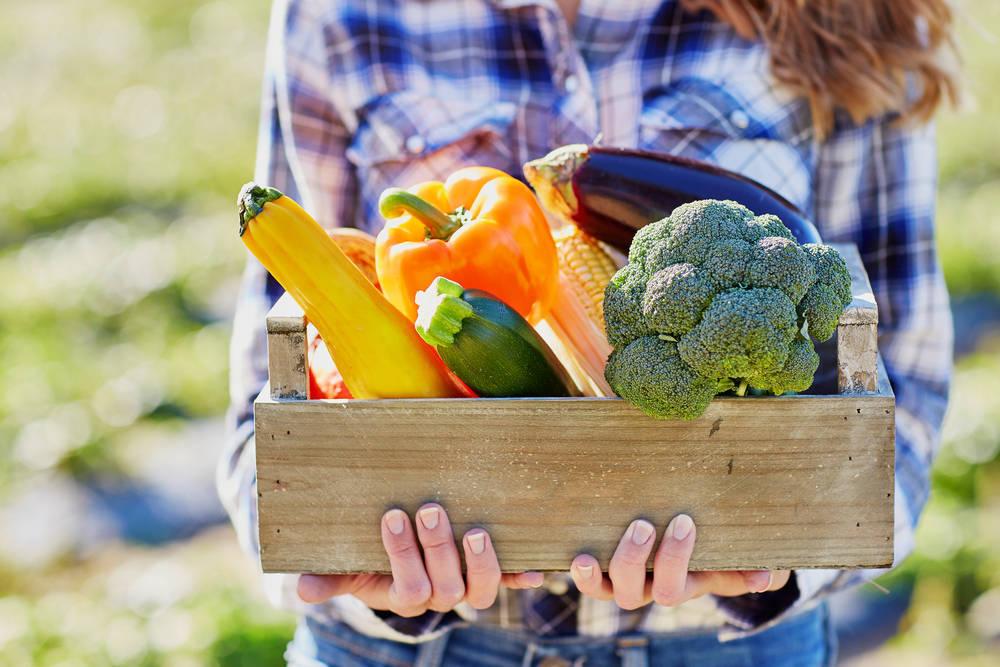 Por qué debemos consumir alimentos ecológicos